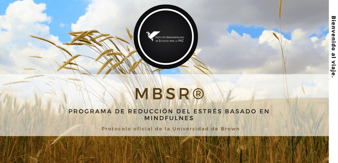Página Web Negocio_Publicidad Contabilidad Azul (2)